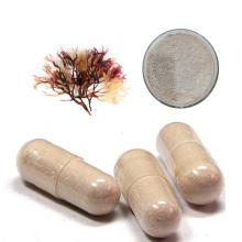 Pure sea moss bladderwrack burdock powder