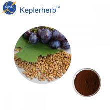 Extracto de semilla de uva 95% OPC