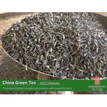 Китай зеленый чай завод