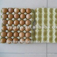 Bac à oeufs de pulpe de papier rigide de haute qualité Uni Size