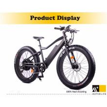 Motorlife Marke 1000w versteckte Batterie Elektrofahrrad / Batterien Elektrofahrräder
