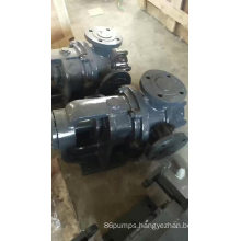 NYP high viscosity glue rotor gear pump