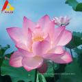 Bulk organic raw lotus honey