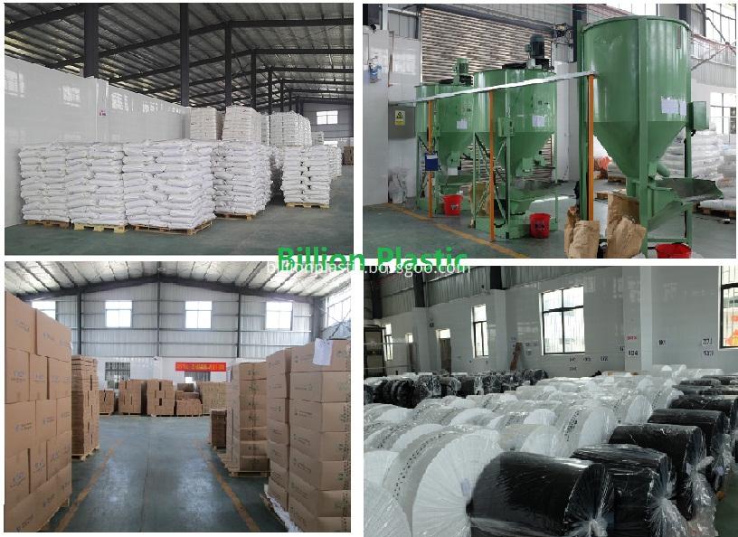 Plastic Bag warehouse