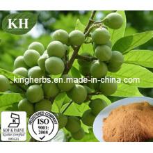Sapindus Extract, Sapindus Mukorossi Extract 40%, 70% Saponins by UV