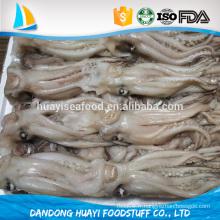 Nouveau tentacultier de calmars à la vente
