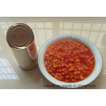 Wholesale Canned Beans in Tomato Sauce
