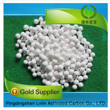 High quality of Activated Alumina with 95% gamma alumina catalyst price per Ton/price in kg