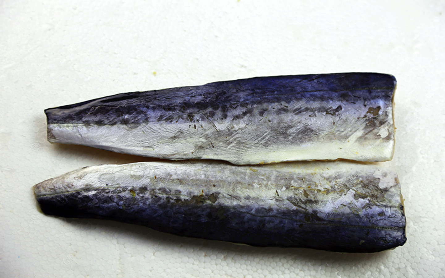 Spanish Mackerel Fillet in Good Quality