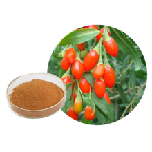 Beneficios minerales inusuales Kosher Goji Powder
