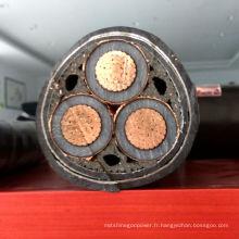 Câble d'alimentation en courant continu gainé en PVC PVC XLPE