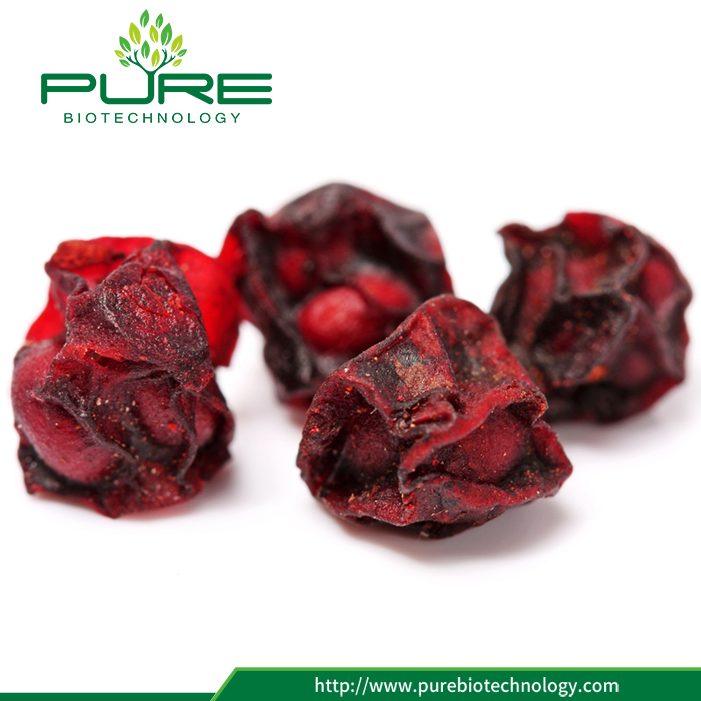 Dried North Schisandra Chinennsis 2017 New Crop (4)
