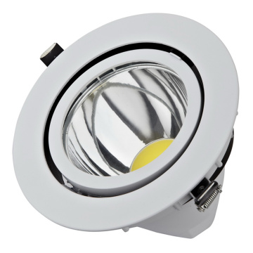 Nowy projekt 15W / 30W Downlights COB Spot Light