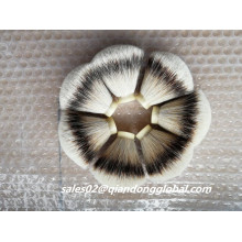 Forma del ventilador Natural Silvertip Badger Hair Knots