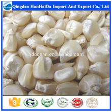 Hot sale & hot cake high quality White maize with reasonable price and fast delivery !!