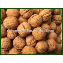 China Rich Nutrient Organic Walnut