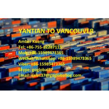 Shenzhen Yantian Sea Freight au Canada Vancouver