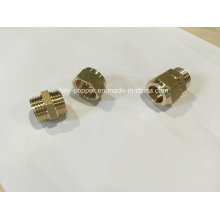 CE Certified Brass Compression End Male Socket (AV70004)