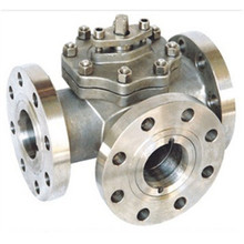 OEM Assembly Check Valve for Oil Industry