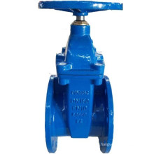 DIN F4 Rubber Wedge Gate Valve