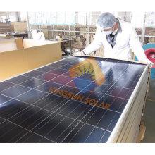 Panel solar poli de 195W con certificado completo