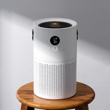 Negative Ion Air Cleaner Ionic Air Purifier Develop