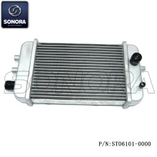 RADIATEUR DERBI SENDAR (P / N: ST06101-0000) Top Quality