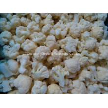 Chinese Frozen IQF Cauliflower for Exporting