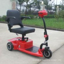 Tricycle électrique sûr approuvé par la CE pour les personnes handicapées (DL24250-1)