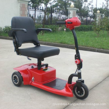 CE Approve 3 Wheels Electric Mobility Scooter (DL24250-1)