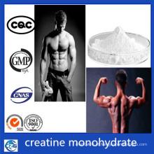 CAS 6020-87-7 Nutrição Esportiva Atacado Creatine Monohydrate Powder