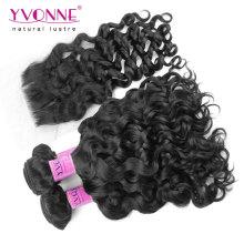 Brazilian Virgin Hair Bundles with Lace Closure