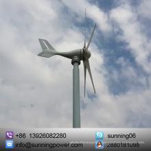 Sunning 300W 12/24V Horizontal Axis Type Wind Turbine