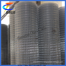 Cheap Galvanized Welded Wire Mesh ISO9001 Factory (CT-4)