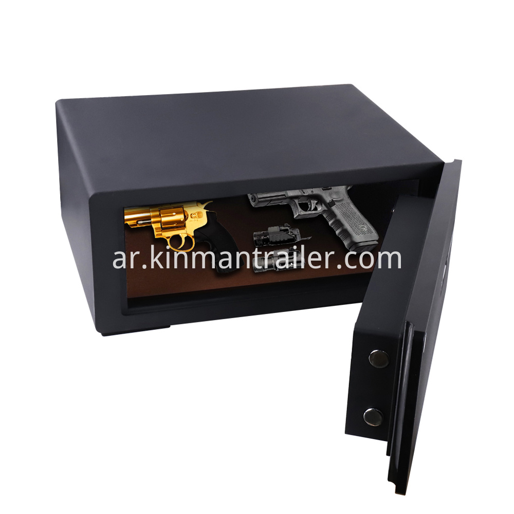 biometric handgun safe