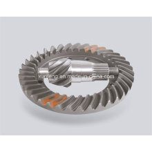 Spiral Bevel Gear with Favorable Price