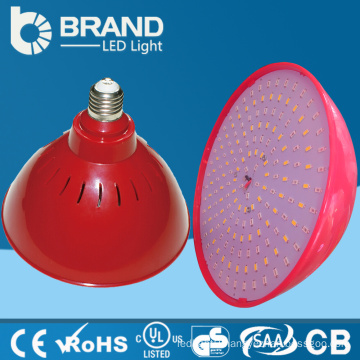 new product new china supplier led cafe light