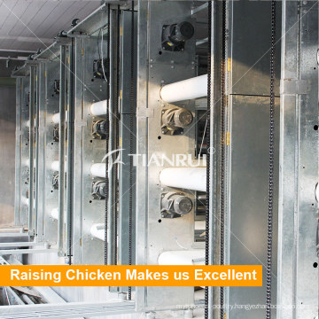 Automatic Layer Chicken Cage Manure Removing System