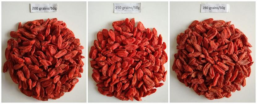 within 300 Grains Goji berry wolfberry