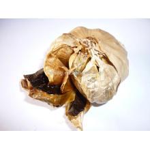Nouvelle culture d'ail noir organique Chine ail noir