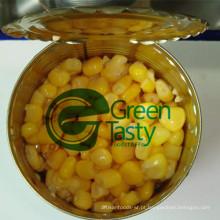 Milho doce enlatado sementes vegetais