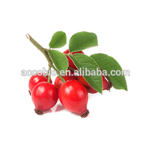 Manufacturer supply food grade organic rosehips fruits extract