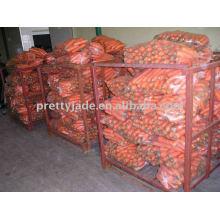 chinese yield new fresh carrot