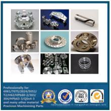 Pièces d'aluminium CNC usinage Chine fabricant (WKC-309)
