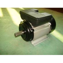 Yl Moteur électrique monophasé (YL90L2)