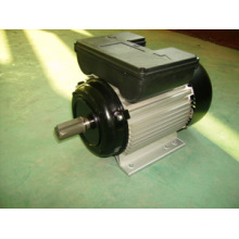 Yl Single Phase Electrical Motor (YL90L2)