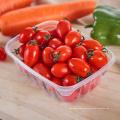 Envases de comida plásticos claros cuadrados disponibles de 25oz PP