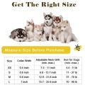 Coleira de cão pequena média grande