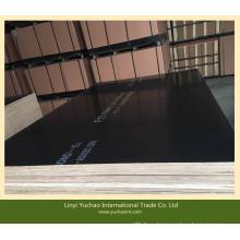 F17 Grada 1200X2400X17mm Negro Film Faced Plywood