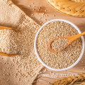 Wholesale Agriculture Products High Quality sesame seed